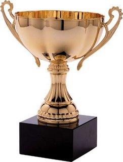 award-trophies-trophy2-788650