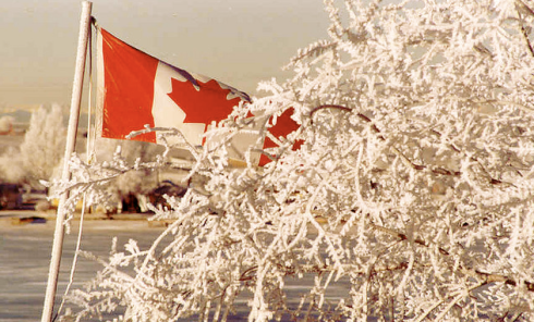 Canadian flag with snow